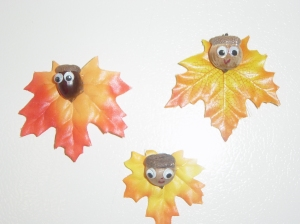 Acorn Man Magnets