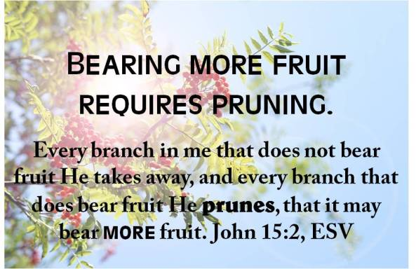 pruning poster